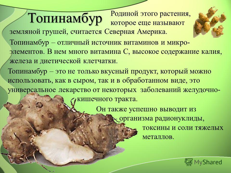 Топинамбур Родиной этого растения, которое еще называют земляной грушей, считается Северная Америка. Топинамбур – отличный источник витаминов и микро- элементов. В нем много витамина С, высокое содержание калия, железа и диетической клетчатки. Топина