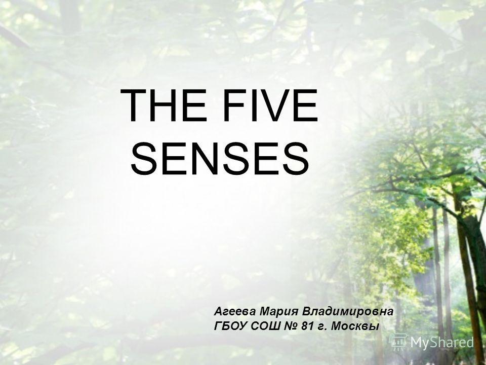 THE FIVE SENSES Агеева Мария Владимировна ГБОУ СОШ 81 г. Москвы