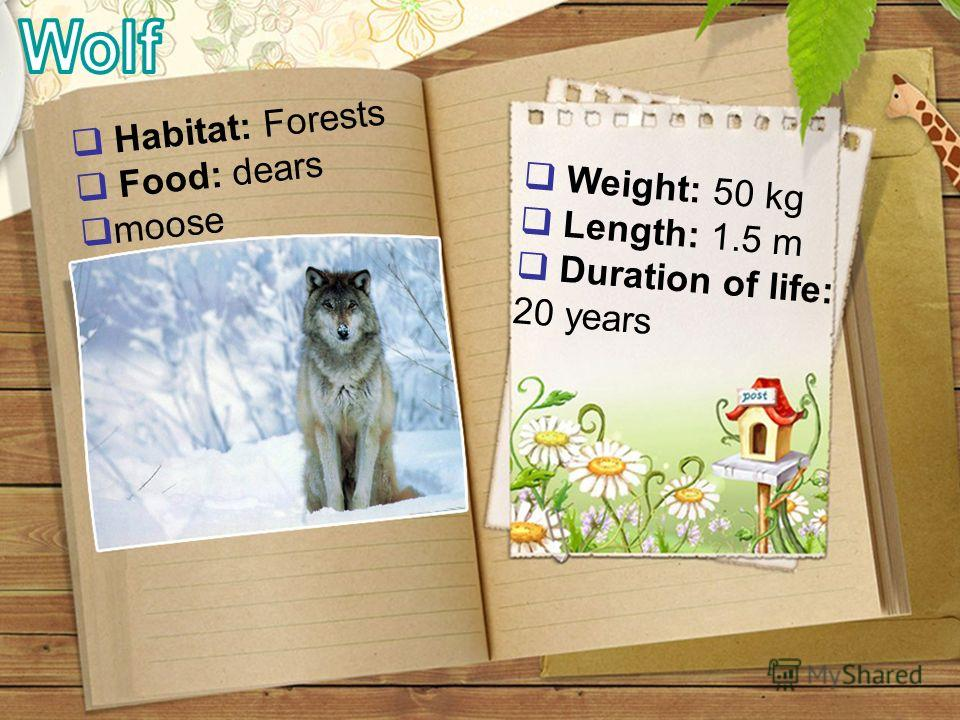 Weight: 50 kg Length: 1.5 m Duration of life: 20 years Habitat: Forests Food: dears moose