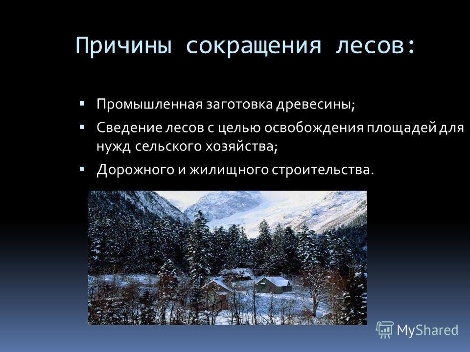 Причины сокращения лесов: Промышленная заготовка древесины; Сведение лесов с целью освобождения площадей для нужд сельского хозяйства; Дорожного и жилищного строительства.
