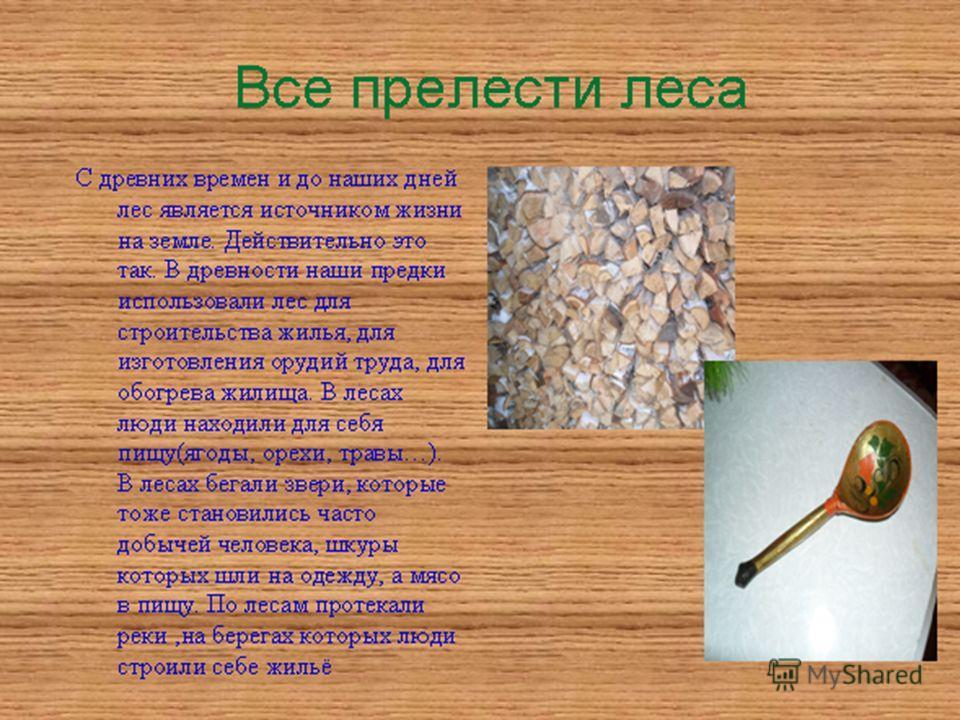 С древних времен и до наших дней лес является источником жизни на земле. Действительно это так. В древности наши предки использовали лес для строительства жилья, для изготовления орудий труда, для обогрева жилища. В лесах люди находили для себя пищу(