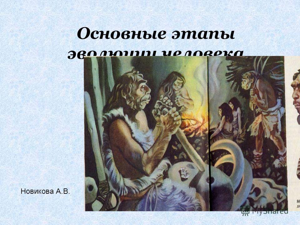 Основные этапы эволюции человека Новикова А.В.