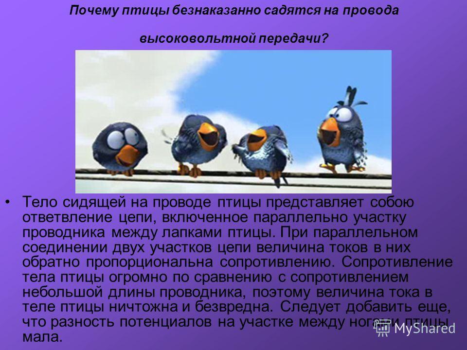 Почему птицы безнаказанно садятся на провода высоковольтной передачи? Тело сидящей на проводе птицы представляет собою ответвление цепи, включенное параллельно участку проводника между лапками птицы. При параллельном соединении двух участков цепи вел