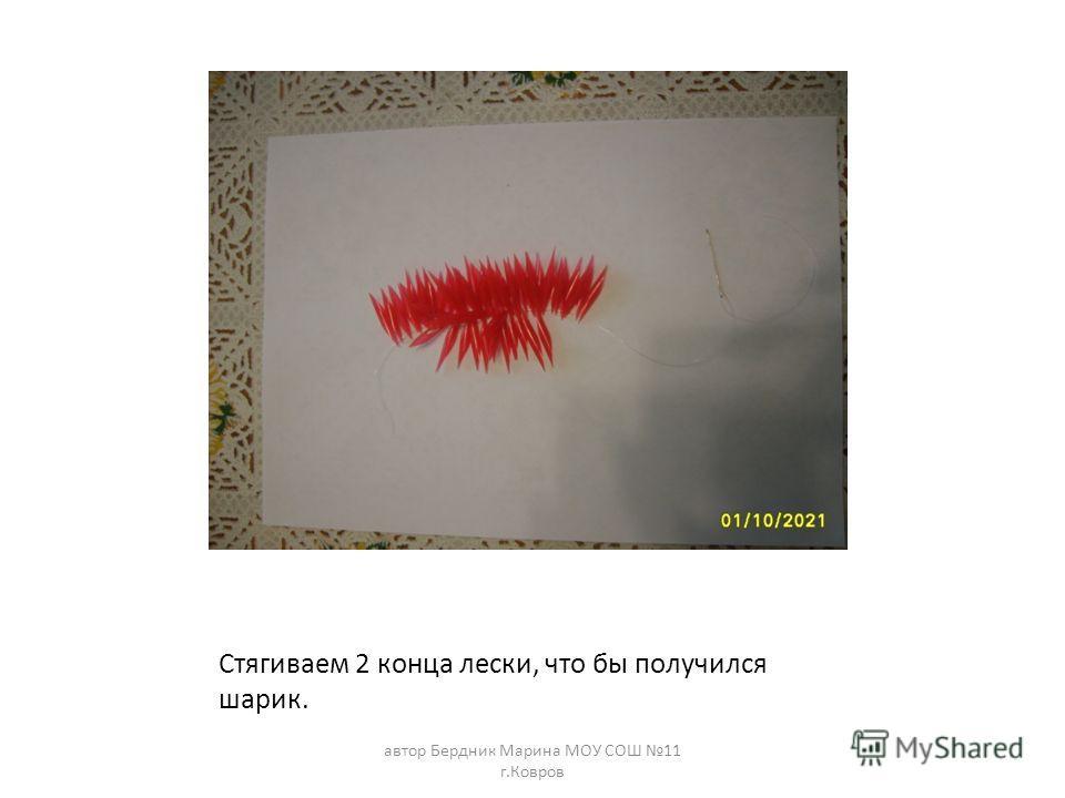 Стягиваем 2 конца лески, что бы получился шарик. автор Бердник Марина МОУ СОШ 11 г.Ковров