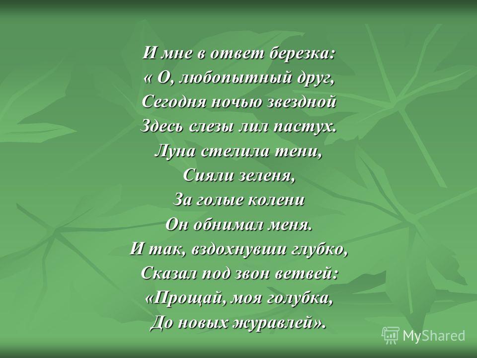 И мне в ответ березка: « О, любопытный друг, Сегодня ночью звездной Здесь слезы лил пастух. Луна стелила тени, Сияли зеленя, За голые колени Он обнимал меня. И так, вздохнувши глубко, Сказал под звон ветвей: «Прощай, моя голубка, До новых журавлей».