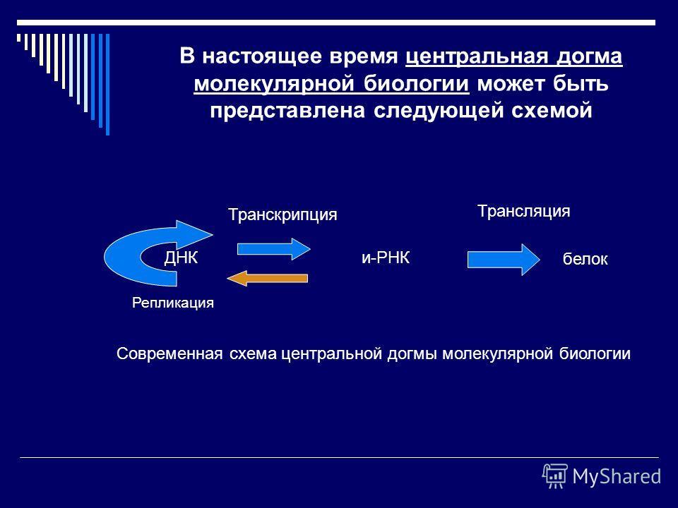 В настоящее время центральная догма молекулярной биологии может быть представлена следующей схемой Репликация ДНКи-РНК белок Транскрипция Трансляция Современная схема центральной догмы молекулярной биологии