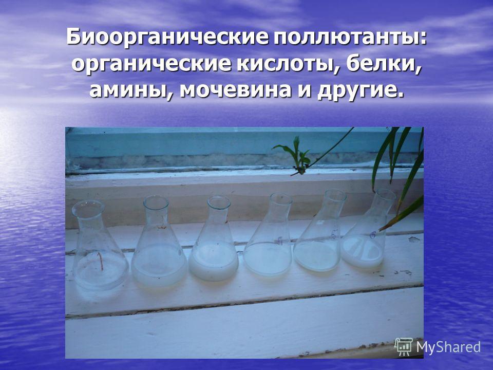 Биоорганические поллютанты: органические кислоты, белки, амины, мочевина и другие.