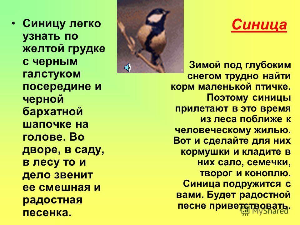 Выполнили: Маргарита Козлова, Анна Карпова - 4 Б класс, МОУ СОШ 4, г. Асино