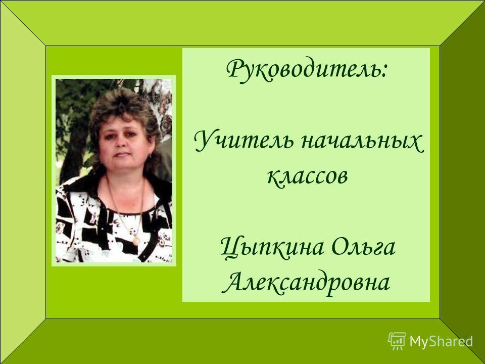 Руководитель: Учитель начальных классов Цыпкина Ольга Александровна