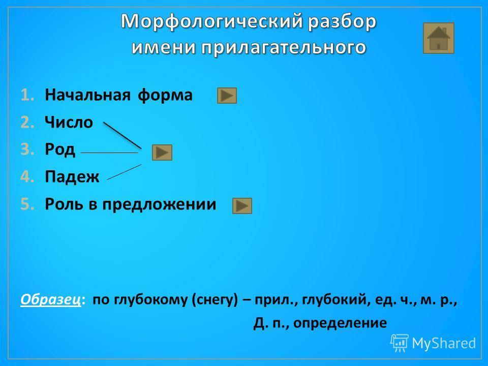 1.Начальная форма 2.Число 3.Род 4.Падеж 5.Роль в предложении Образец : по глубокому ( снегу ) – прил., глубокий, ед. ч., м. р., Д. п., определение