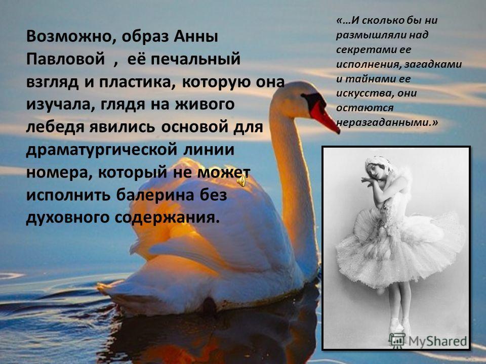 Возможно, образ Анны Павловой, её печальный взгляд и пластика, которую она изучала, глядя на живого лебедя явились основой для драматургической линии номера, который не может исполнить балерина без духовного содержания. «…И сколько бы ни размышляли н