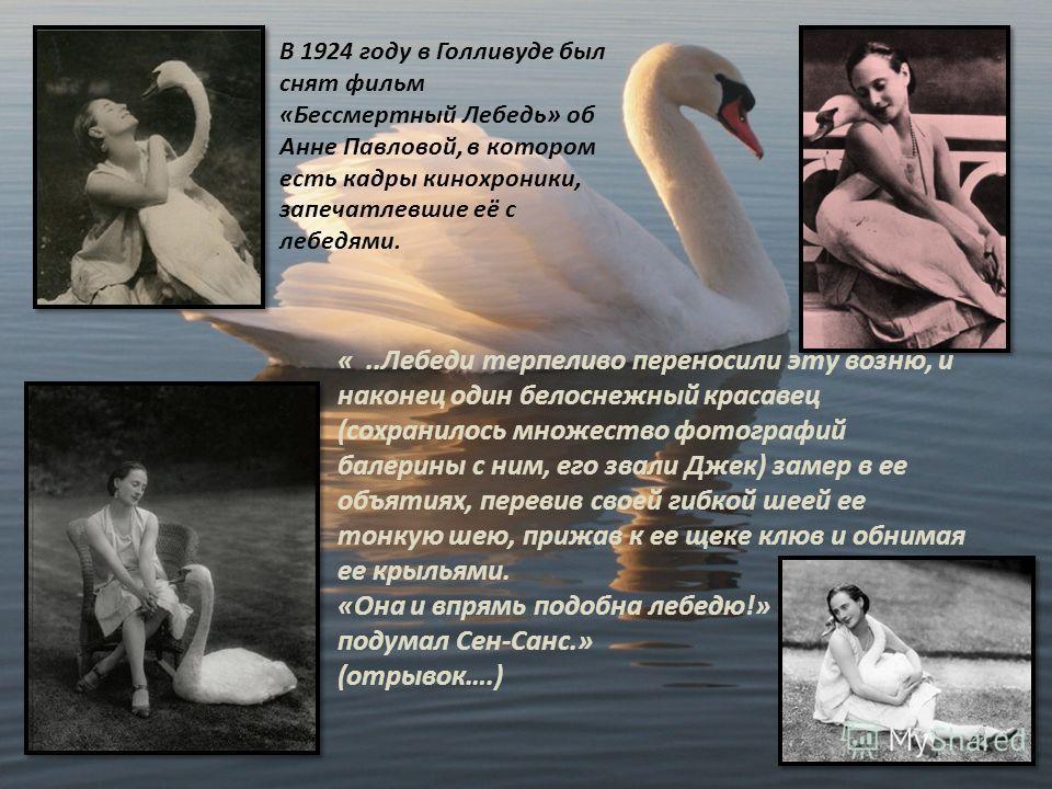 В 1924 году в Голливуде был снят фильм «Бессмертный Лебедь» об Анне Павловой, в котором есть кадры кинохроники, запечатлевшие её с лебедями. «..Лебеди терпеливо переносили эту возню, и наконец один белоснежный красавец (сохранилось множество фотограф