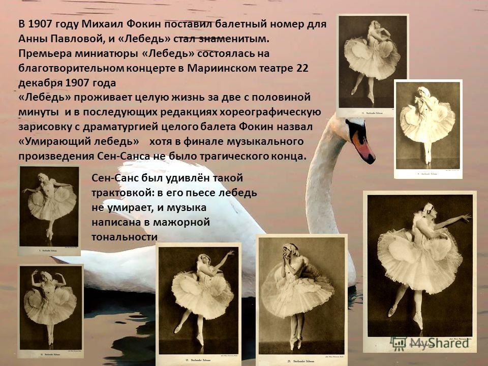 В 1907 году Михаил Фокин поставил балетный номер для Анны Павловой, и «Лебедь» стал знаменитым. Премьера миниатюры «Лебедь» состоялась на благотворительном концерте в Мариинском театре 22 декабря 1907 года «Лебедь» проживает целую жизнь за две с поло