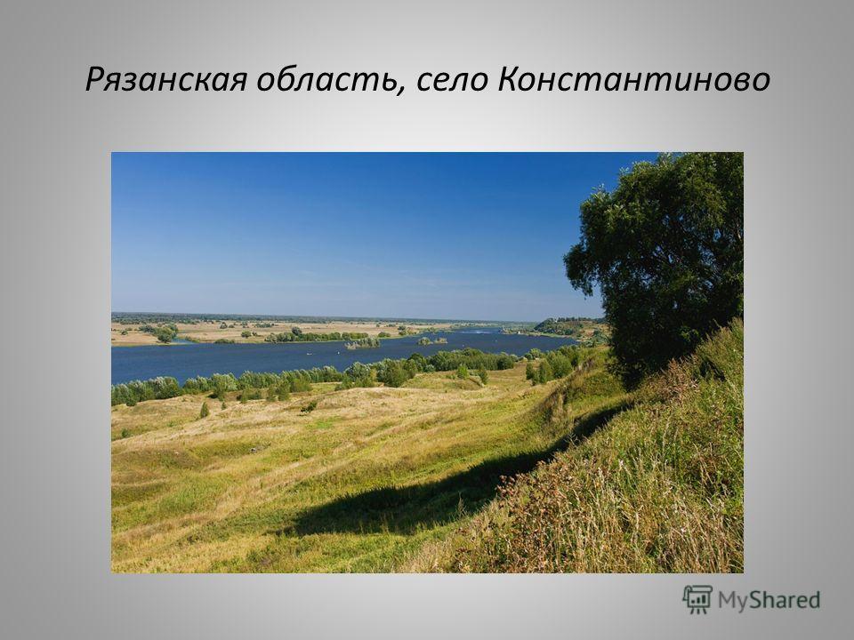 Рязанская область, село Константиново