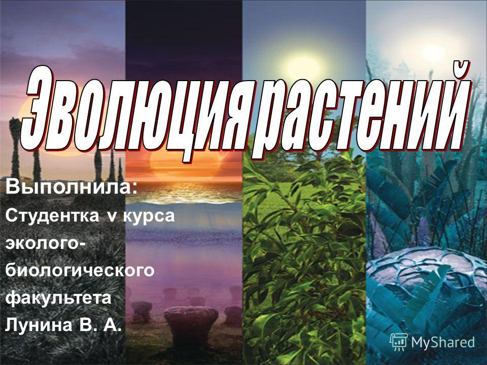 Выполнила: Студентка v курса эколого- биологического факультета Лунина В. А.