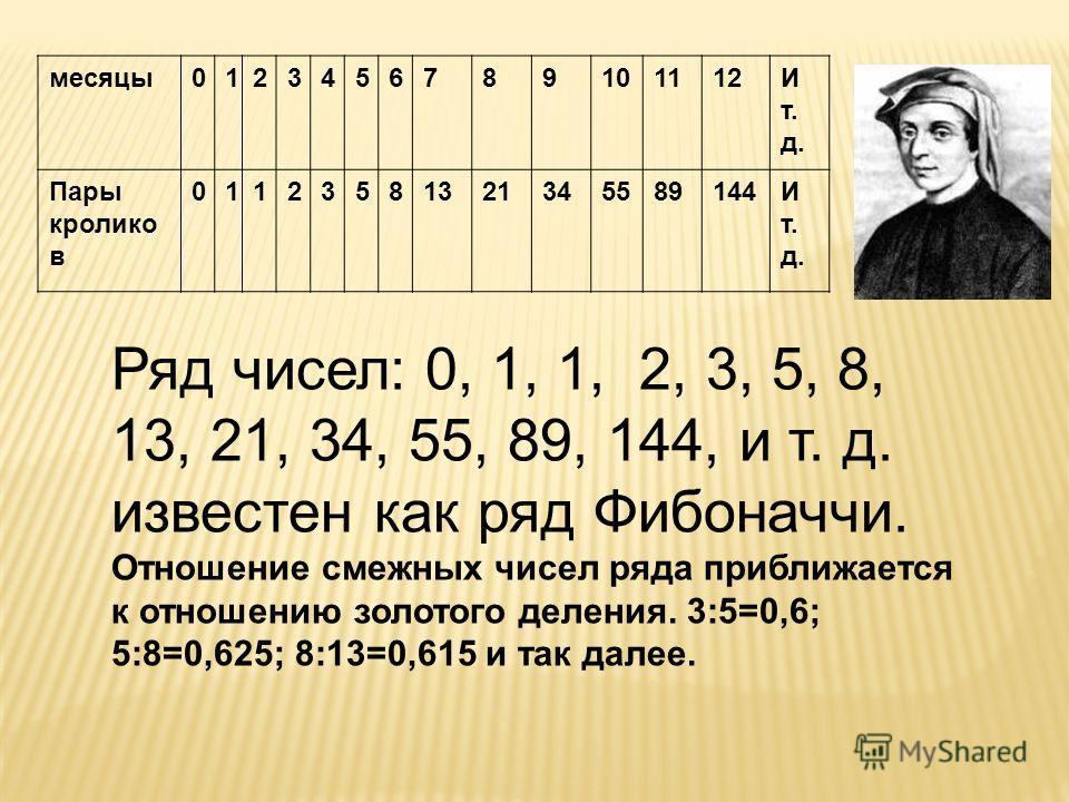 Ряд чисел: 0, 1, 1, 2, 3, 5, 8, 13, 21, 34, 55, 89, 144, и т. д. известен как ряд Фибоначчи. Отношение смежных чисел ряда приближается к отношению золотого деления. 3:5=0,6; 5:8=0,625; 8:13=0,615 и так далее. месяцы0123456789101112Ит.д.Ит.д. Пары кро