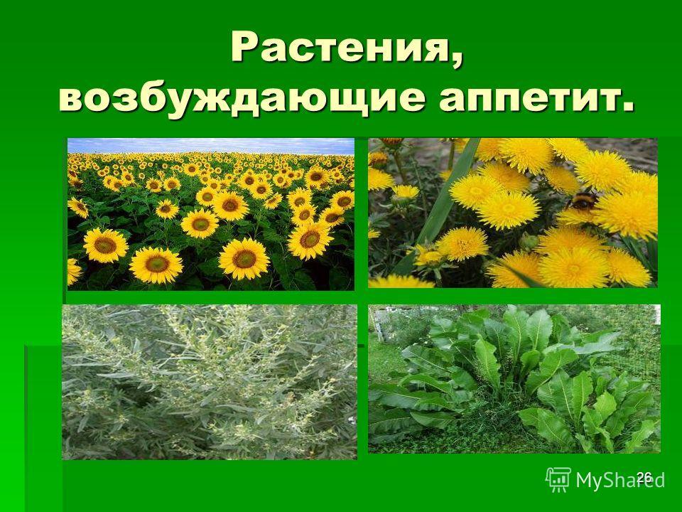 26 Растения, возбуждающие аппетит.