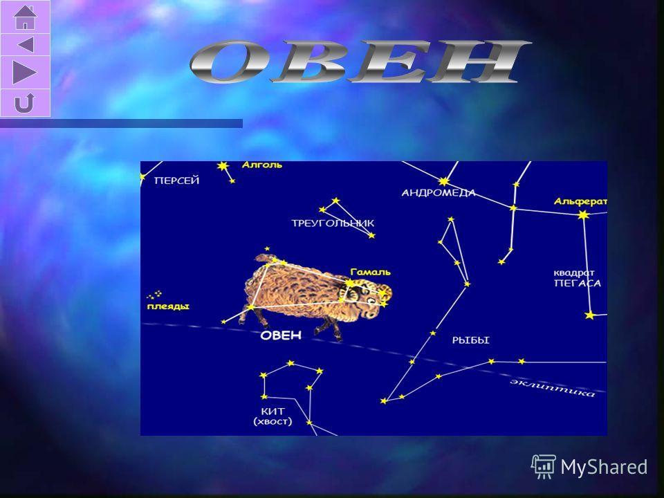 На всем небе нет иного созвездия, которое бы содержало столько интересных и легко доступных для наблюдения объектов, как Орион. Главная звезда Ригель, самая яркая звезда созвездия.