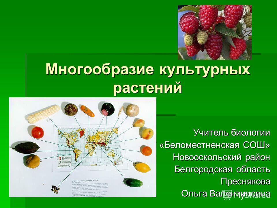 Презентация на тему Многообразие культурных растений Учитель  1 Многообразие культурных растений