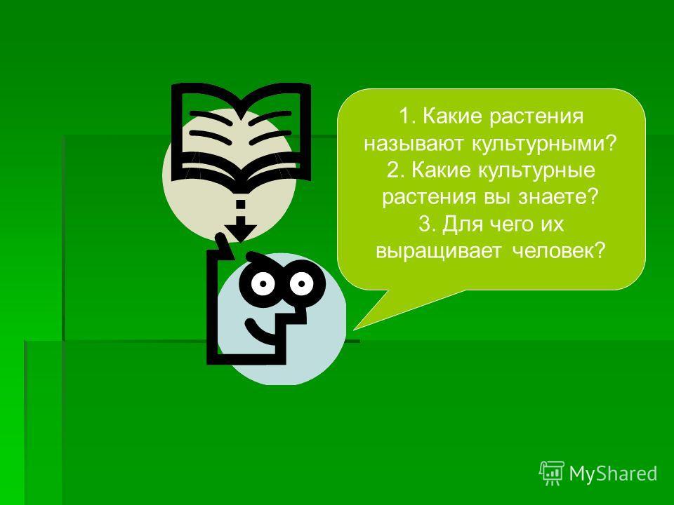 1. Какие растения называют культурными? 2. Какие культурные растения вы знаете? 3. Для чего их выращивает человек?