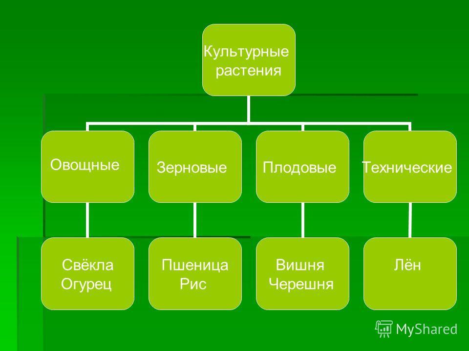 знакомство без регистрации бесплатно с телефоном белгородская область
