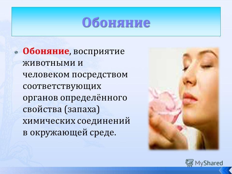 Обоняние, восприятие животными и человеком посредством соответствующих органов определённого свойства (запаха) химических соединений в окружающей среде.