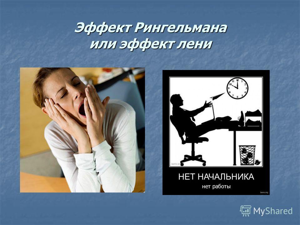 Эффект Рингельмана или эффект лени