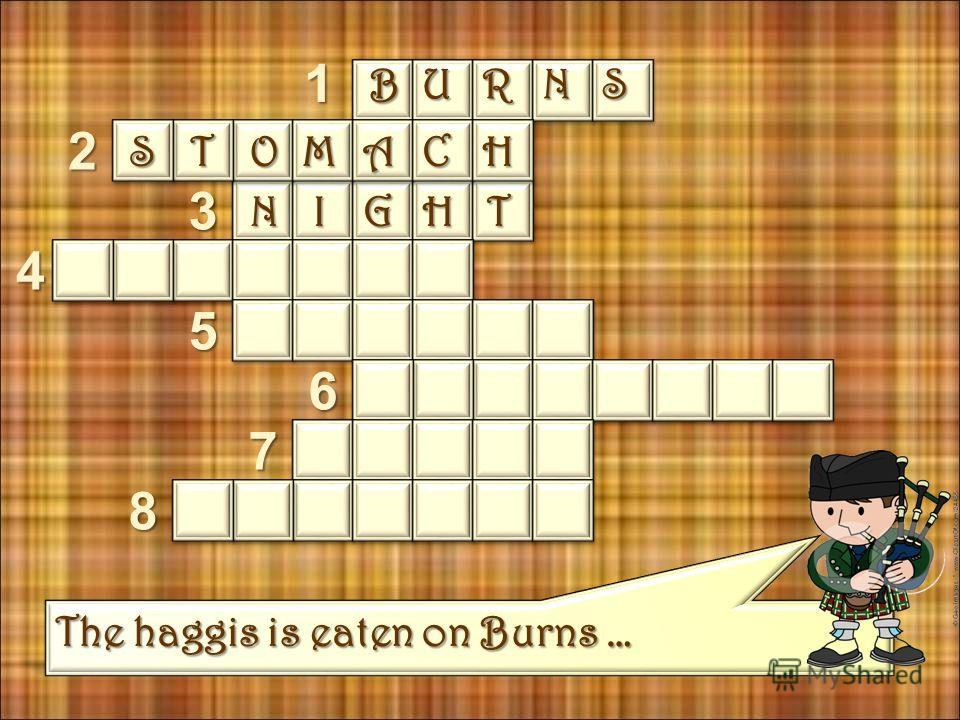 The skin of the haggis used to be made from sheeps … 1 2 3 4 5 6 7 8 BURNS STOMACH
