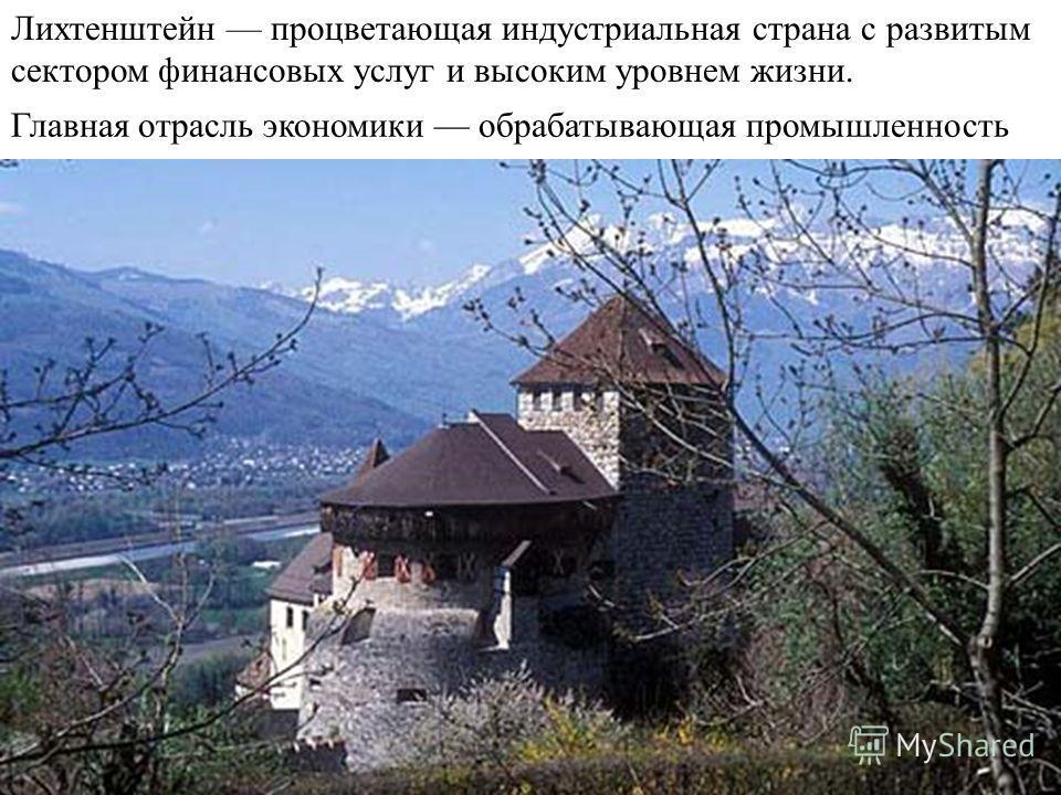 Лихтенштейн процветающая индустриальная страна с развитым сектором финансовых услуг и высоким уровнем жизни. Главная отрасль экономики обрабатывающая промышленность