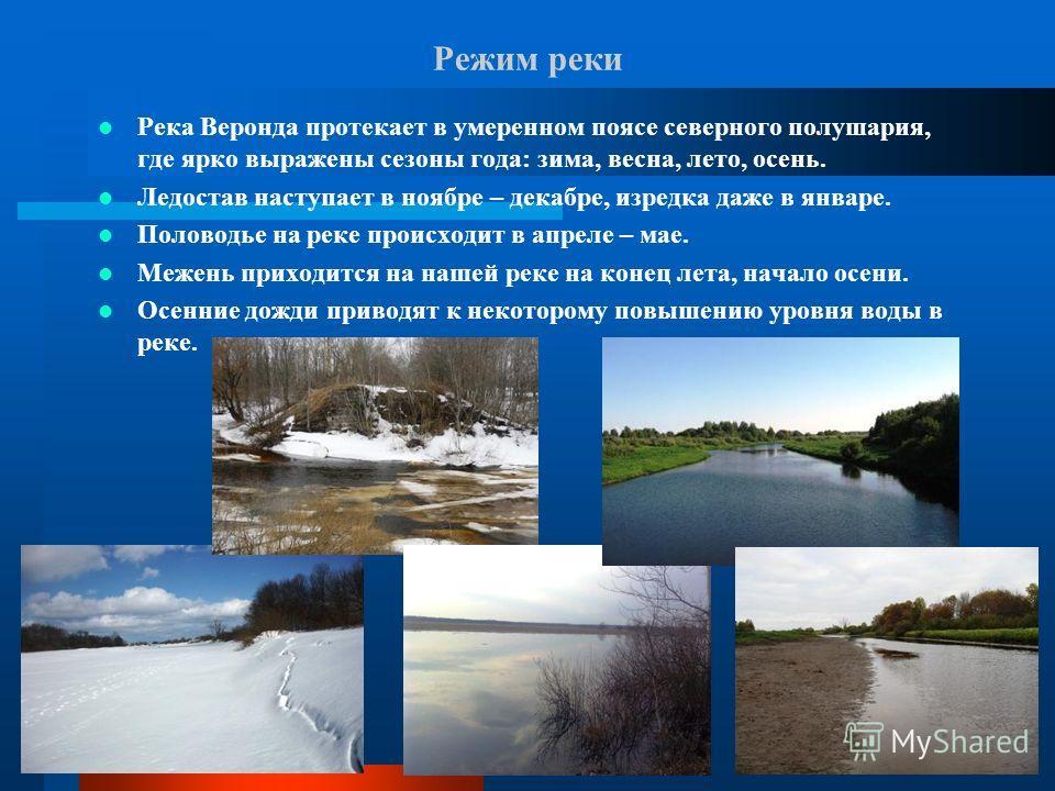 Режим реки Река Веронда протекает в умеренном поясе северного полушария, где ярко выражены сезоны года: зима, весна, лето, осень. Ледостав наступает в ноябре – декабре, изредка даже в январе. Половодье на реке происходит в апреле – мае. Межень приход