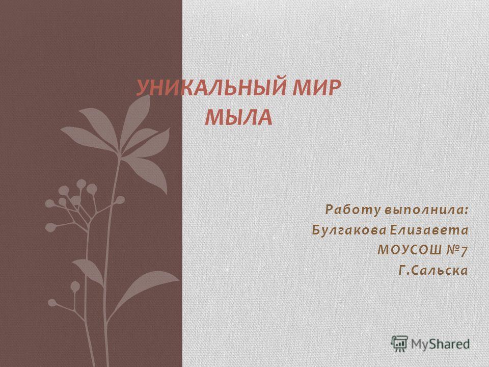 Работу выполнила: Булгакова Елизавета МОУСОШ 7 Г.Сальска УНИКАЛЬНЫЙ МИР МЫЛА