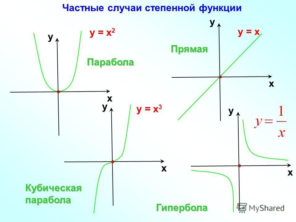 у = х 2 х у у = х 3 х у х уПарабола Кубическая парабола Гипербола у = х х уПрямая Частные случаи степенной функции