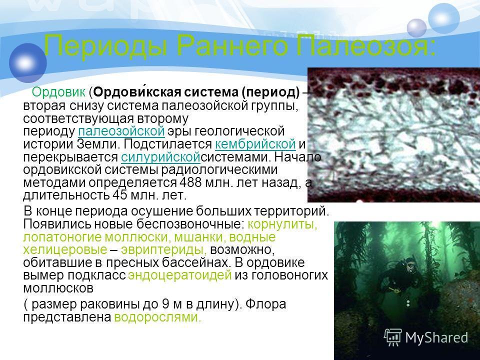 Периоды Раннего Палеозоя: Ордовик (Ордови́кская система (период) вторая снизу система палеозойской группы, соответствующая второму периоду палеозойской эры геологической истории Земли. Подстилается кембрийской и перекрывается силурийскойсистемами. На