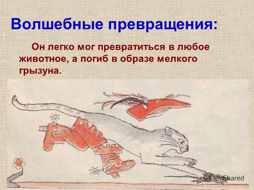 Волшебные превращения: Он легко мог превратиться в любое животное, а погиб в образе мелкого грызуна.