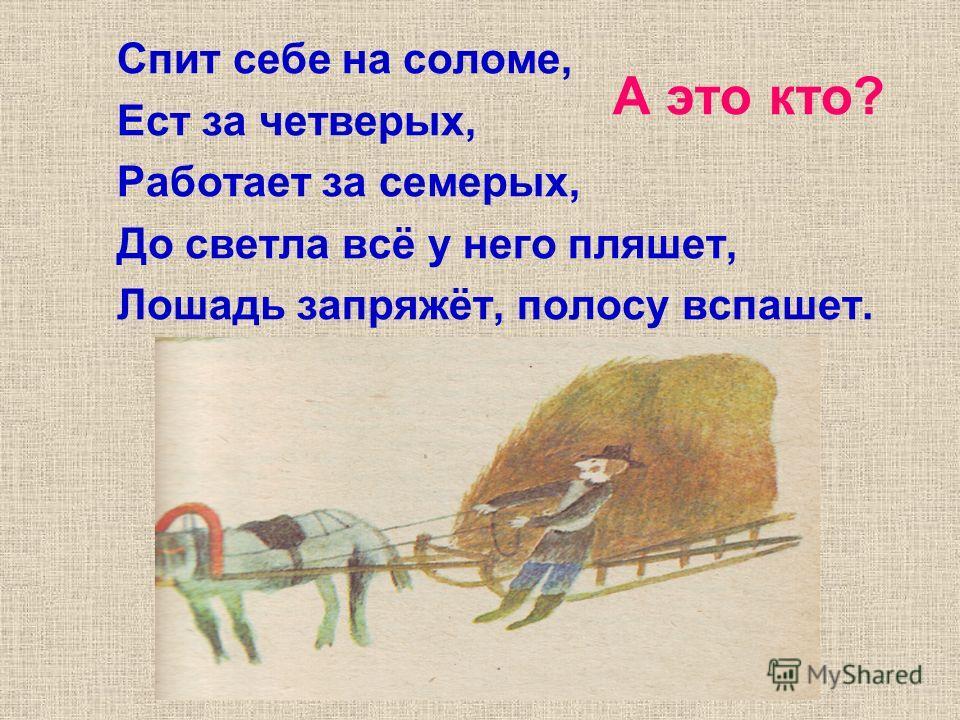 А это кто? Спит себе на соломе, Ест за четверых, Работает за семерых, До светла всё у него пляшет, Лошадь запряжёт, полосу вспашет.
