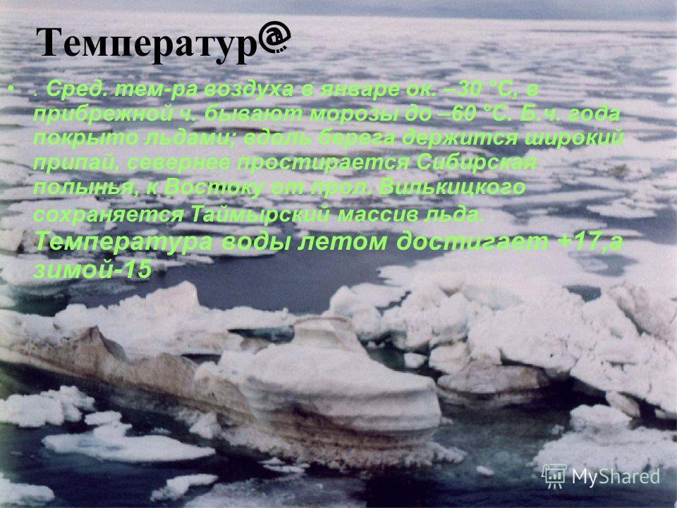 Температур @. Сред. тем-ра воздуха в январе ок. –30 °С, в прибрежной ч. бывают морозы до –60 °С. Б.ч. года покрыто льдами; вдоль берега держится широкий припай, севернее простирается Сибирская полынья, к Востоку от прол. Вилькицкого сохраняется Таймы