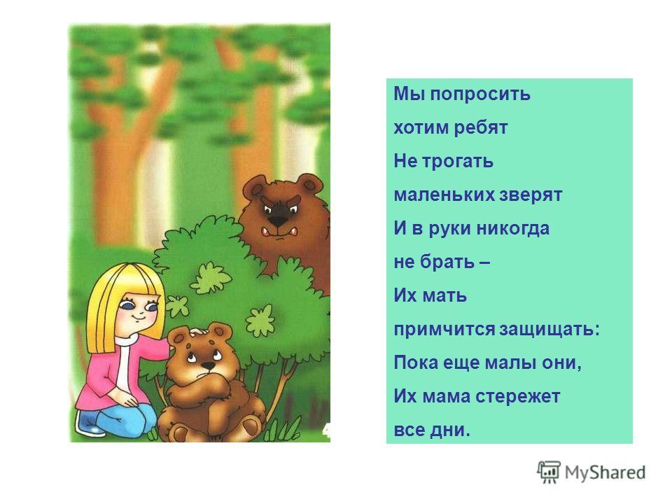 Мы попросить хотим ребят Не трогать маленьких зверят И в руки никогда не брать – Их мать примчится защищать: Пока еще малы они, Их мама стережет все дни.