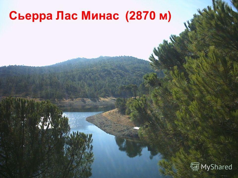 Сьерра Лас Минас(2870 м)