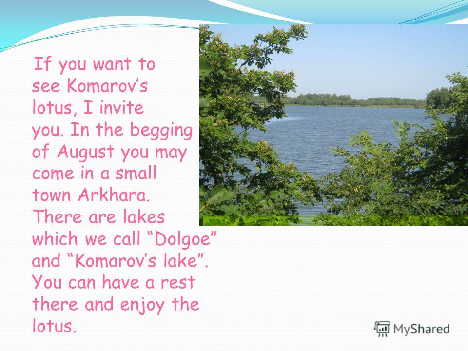 If you want to see Komarovs lotus, I invite you. In the begging of August you may come in a small town Arkhara. There are lakes which we call Dolgoe and Komarovs lake. You can have a rest there and enjoy the lotus.