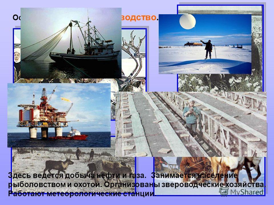 Основное занятие - оленеводство. Здесь ведется добыча нефти и газа. Занимается население рыболовством и охотой. Организованы звероводческие хозяйства. Работают метеорологические станции.