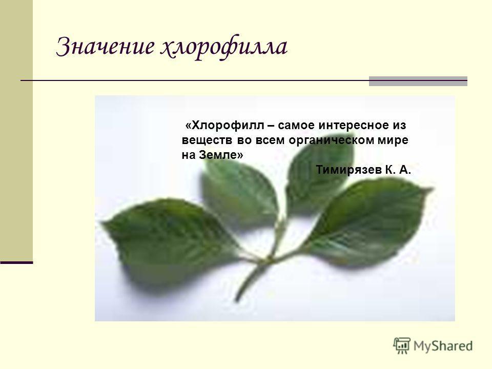 Значение хлорофилла «Хлорофилл – самое интересное из веществ во всем органическом мире на Земле» Тимирязев К. А.