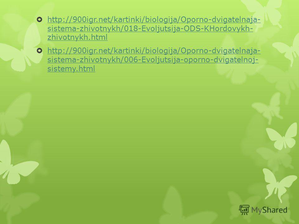 http://900igr.net/kartinki/biologija/Oporno-dvigatelnaja- sistema-zhivotnykh/018-Evoljutsija-ODS-KHordovykh- zhivotnykh.html http://900igr.net/kartinki/biologija/Oporno-dvigatelnaja- sistema-zhivotnykh/018-Evoljutsija-ODS-KHordovykh- zhivotnykh.html