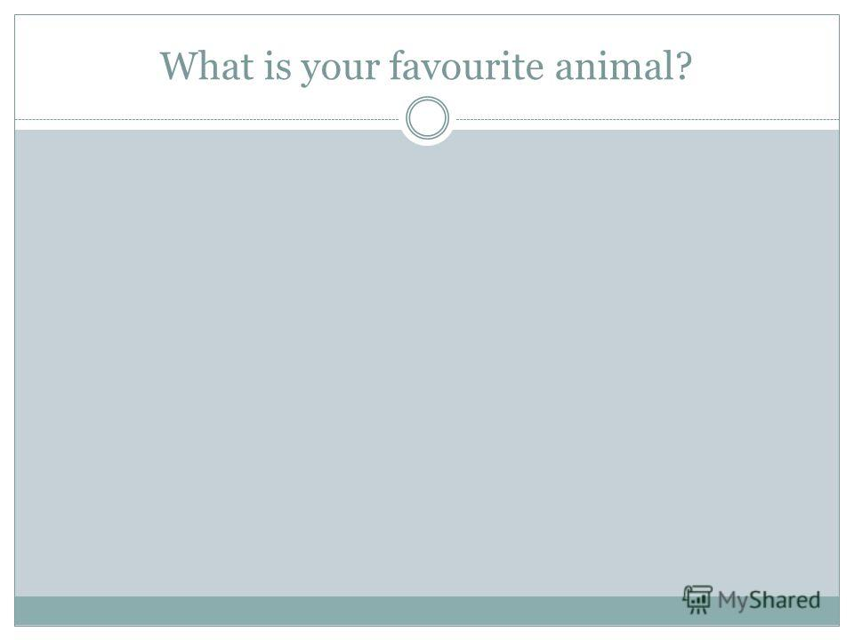 What is your favourite animal?
