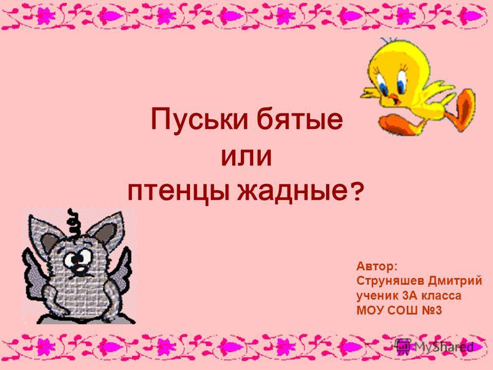 Пуськи бятые или птенцы жадные ? Автор: Струняшев Дмитрий ученик 3А класса МОУ СОШ 3