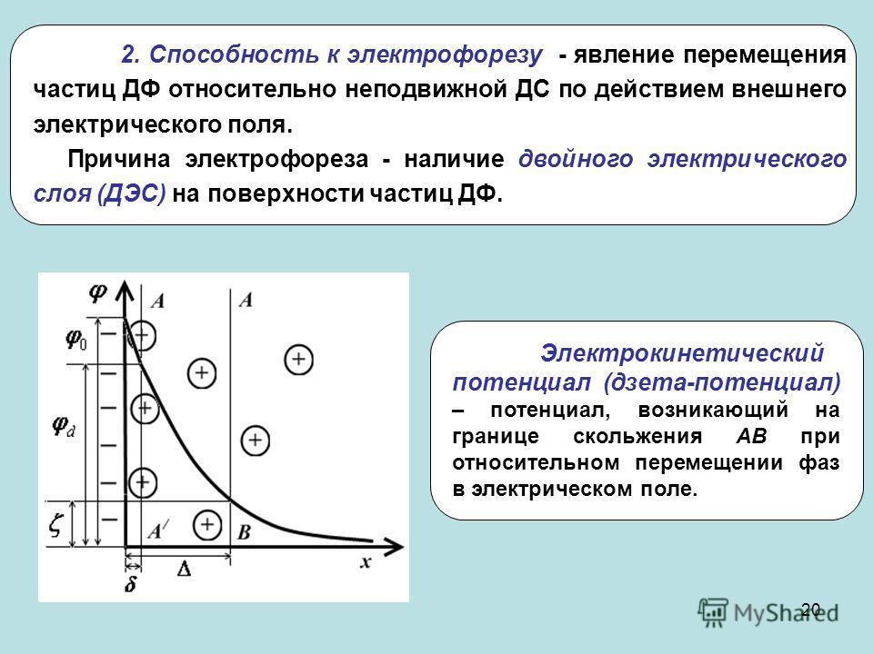 20 Электрокинетический потенциал (дзета-потенциал) – потенциал, возникающий на границе скольжения АВ при относительном перемещении фаз в электрическом поле. 2. Способность к электрофорезу - явление перемещения частиц ДФ относительно неподвижной ДС по