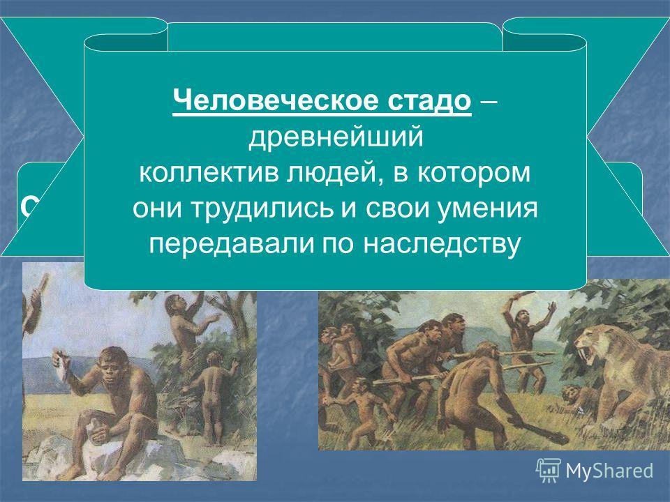 Добывание пищи СобирательствоОхота Человеческое стадо – древнейший коллектив людей, в котором они трудились и свои умения передавали по наследству