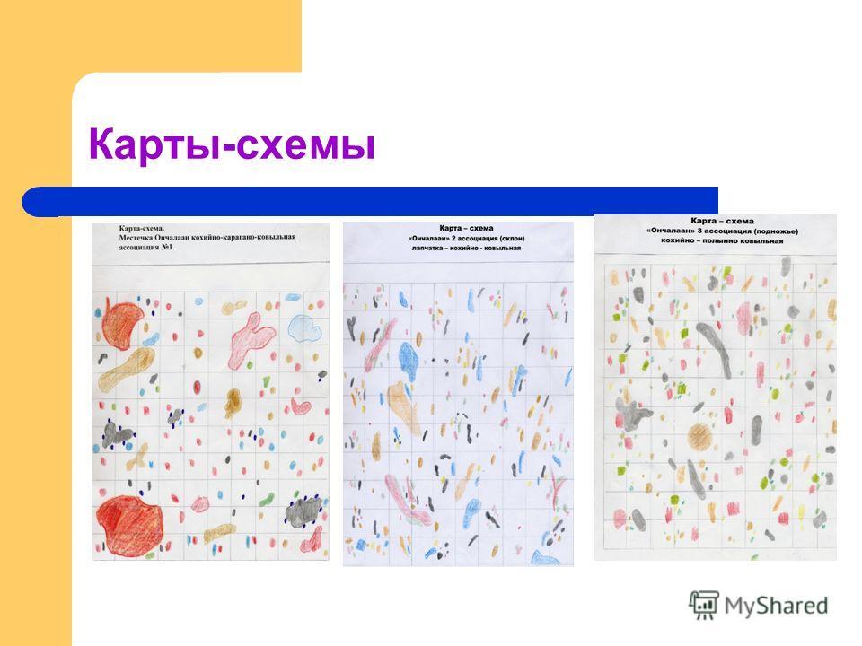 Карты-схемы