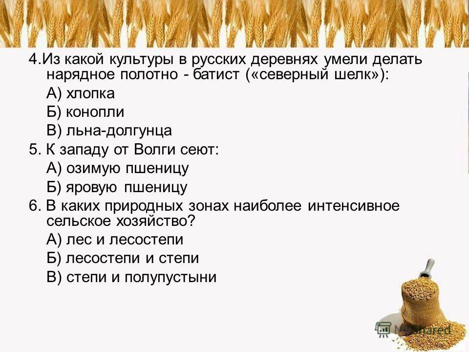 4.Из какой культуры в русских деревнях умели делать нарядное полотно - батист («северный шелк»): А) хлопка Б) конопли В) льна-долгунца 5. К западу от Волги сеют: А) озимую пшеницу Б) яровую пшеницу 6. В каких природных зонах наиболее интенсивное сель