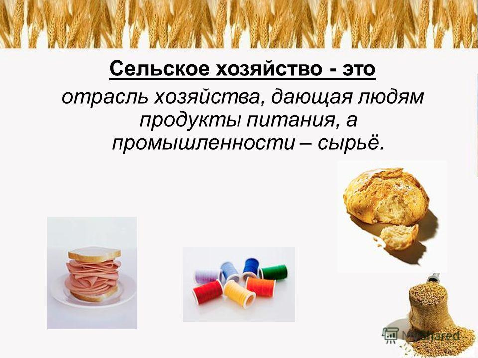 Сельское хозяйство - это отрасль хозяйства, дающая людям продукты питания, а промышленности – сырьё.