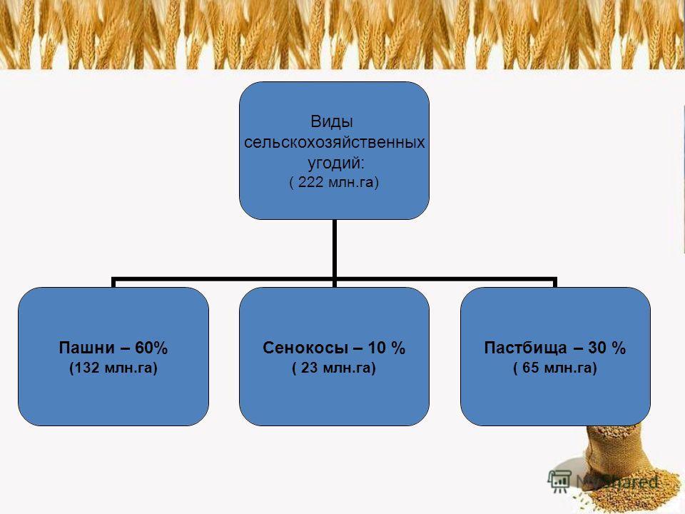 Виды сельскохозяйственных угодий: ( 222 млн.га) Пашни – 60% (132 млн.га) Сенокосы – 10 % ( 23 млн.га) Пастбища – 30 % ( 65 млн.га)